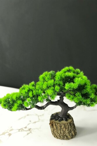 - Kütükte Bonsai Ağacı Yeşil