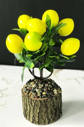 - Kütükte Limon Ağacı